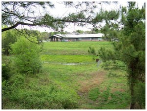 Land and Tree Appraisals in York County